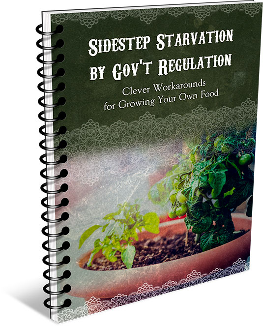 How to Sidestep Starvation by Gov't Regulation